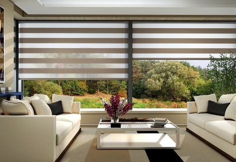Motorized Sheer Roller Shades With Images Sheer Window Shades