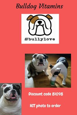 English Bulldog Supplements Why Should My Bulldog Take A Vitamin