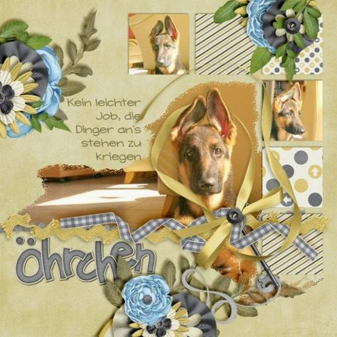 Templates State of mind by QueenWildScraps EASTCOAST:  WelcomeBABY-Bundle by LittleRadTrio Photos by kpmelly (2007)