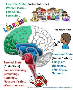 49++ Breathing regulation in the brain inspirations