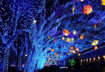 Top 10 Best Products Best Christmas Lights Christmas Light