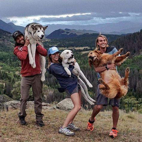 Картинки по запросу локи собака