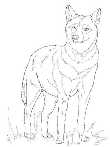 Wolf Coloring Pages Realistic Italian Wolf Coloring Page Coloring Pages Animal Coloring Pages Mothers Day Coloring Pages