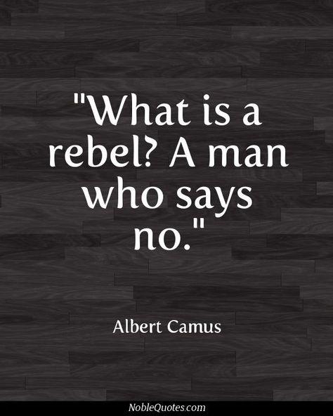 Top quotes by Albert Camus-https://s-media-cache-ak0.pinimg.com/474x/34/40/b5/3440b50e866583b5b0152e9aabf38151.jpg