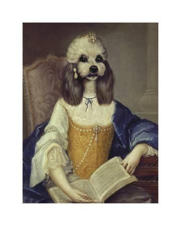 Madame Du Barry Premium Giclee Print By Thierry Poncelet At Art Com Madame Du Barry Havanese Art Com