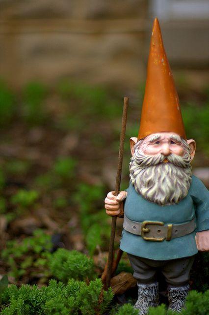 The 25 best Garden gnomes ideas on Pinterest Gnomes Yard