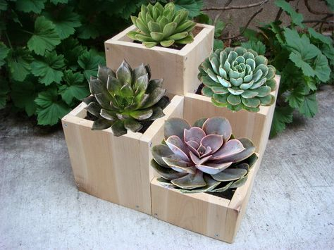 """Wood planter, garden flower pot, tabletop size, 4 compartments for various plants and flowers: """"Jewel"""". $28.00, via Etsy."""