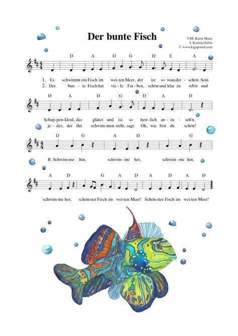 De Kigaportal Kindergarten Kita Sommer Meer Fisch Fische Lied