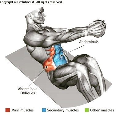 gymlife ABDOMINALS - DUMBBELL RUSSIAN...
