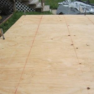 1 2 Inch Cdx Plywood Tiny House Building A Tiny House Oneida