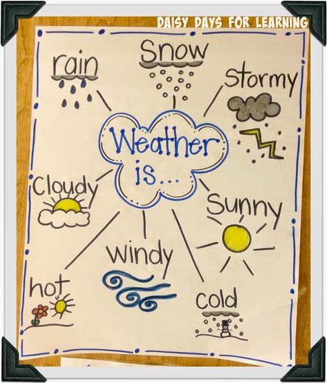 Daisy Days for Learning: Polar Bears and Weather - Daisy Days for Learning: Polar Bears and Weather Making use of Graphs in addition to Topographical Road directions Weather Activities Preschool, Teaching Weather, Weather Science, Fun Classroom Activities, Weather Unit, Weather And Climate, Science Classroom, Ela Anchor Charts, Science Anchor Charts