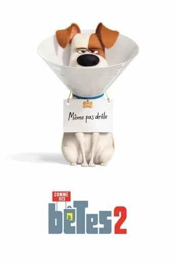 Trailer The Secret Life Of Pets 2 Snowball La Vida Secreta De Tus Mascotas Fondo De Pantalla Iphone Tumblr Cosas De Disney