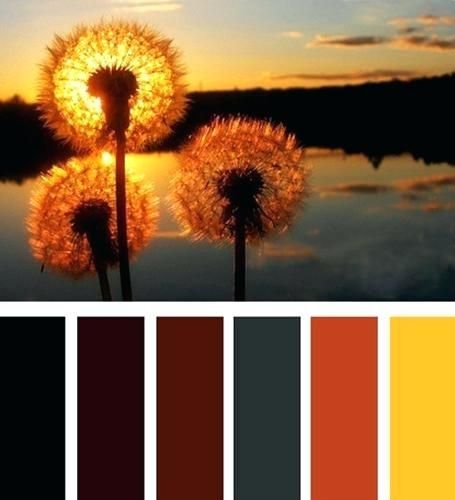 Rust Color Palette Relaxing And Calming Interior Decorating Color