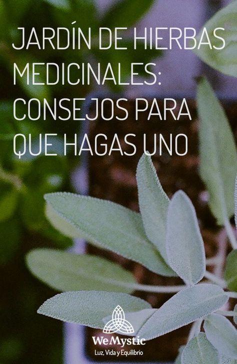 Jardín De Hierbas Medicinales Consejos Para Que Hagas Uno Wemystic Plantas Aromaticas Y Medicinales Hierbas Jardín De Hierbas