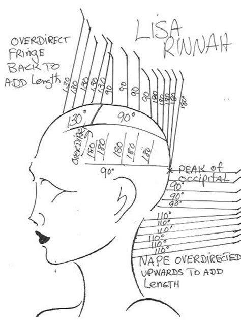 Haircut Diagram : haircut, diagram