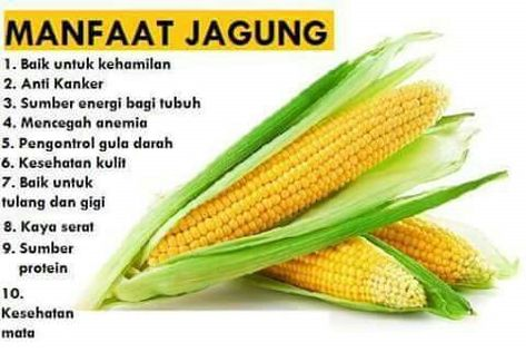 19 Corn Jagung 玉米 Ideas Cooking Recipes Food Recipes