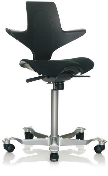 Hag Capisco Puls 8020 Ergonomic Chair Review Ergonomic Chair Chair Bike