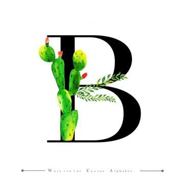 Alphabet Letter B With Watercolor Cactus And Leaves Background Watercolor Color Floral Png And Vector With Transparent Background For Free Download Lettering Alphabet Watercolor Cactus Letter B