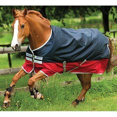 Amigo Mio Turnout Horse Blanket