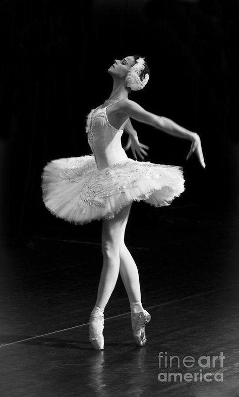 Ballet Pictures, Dance Pictures, Ballet Art, Ballet Dancers, Ballerinas, Zar Nikolaus Ii, Russian Ballet, Dance Poses, Dance Picture Poses