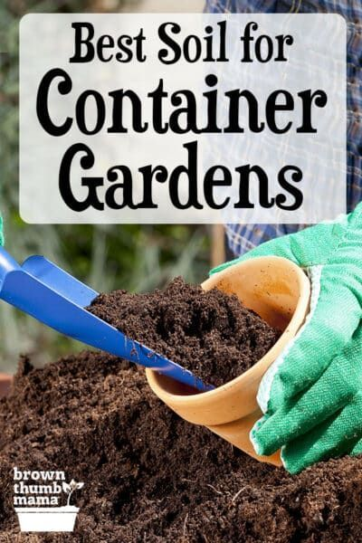 Best Soil To Use For Container Gardening