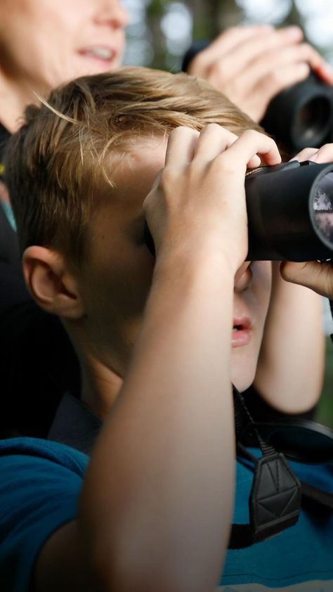 Our quick-and-easy-guide to birding has everything you need to get started, including some great tips from our partners at Maine Audubon.