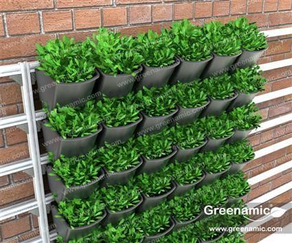 WallPot Additional Information: Www.greenamic.com | Green Living Wall |  Pinterest | Gardens, Living Walls And Indoor Hydroponics