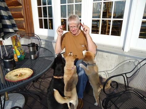 Quels plaisirs rendent vos animaux de compagnie fous? - #animaux #compagnie #plaisirs #quels #rendent -     Nous nourrissons nos animaux de compagnie, y compris nos chevaux, d'un régime alimentaire sain conçu pour les maintenir sains et minces. Cela ne signifie pas qu'ils ne reçoivent pas de friandises! Presque tous les animaux domestiques peuvent avoir une friandise de temps en temps. Le maximum devrait être de 10% de l'apport calorique total, bien qu'il soit probablement judicieux de le maint
