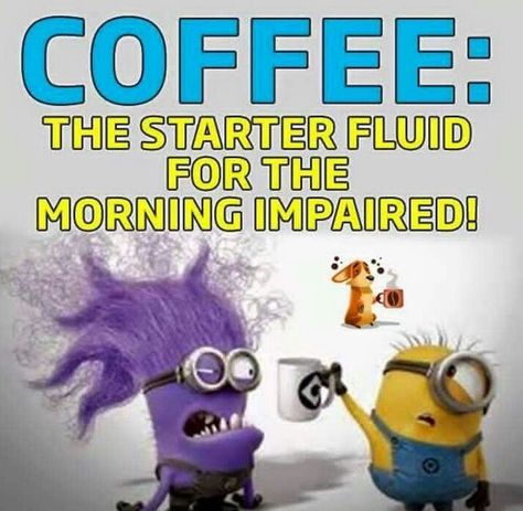 Funny Minions from Colorado AM, Thursday October 2016 PDT) - 66 pics - Minion Quotes Evil Minions, Minions Love, Minions Pics, Minions Friends, Purple Minions, Minion Talk, Yellow Minion, Minion Stuff, Just For Laughs