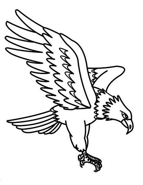 Free Printable Eagle Coloring Pages For Kids Bird Coloring Pages