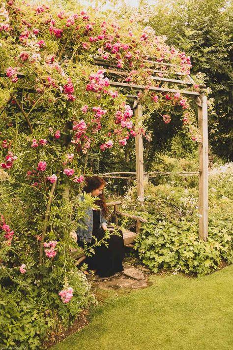 A Visit To Le Jardin De Berchigranges Visitvosges All Plants Plants Outdoor