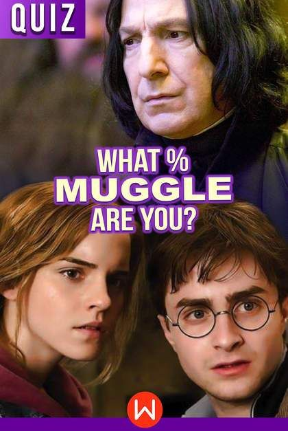 Quiz: What Percent Muggle Are You? | Quizes | Harry potter