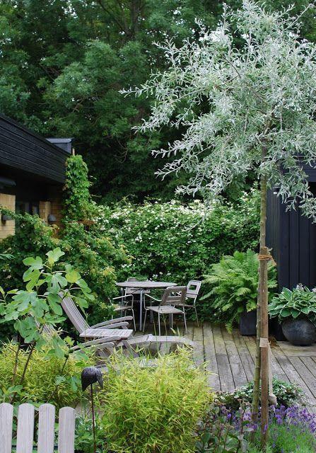 Holzdeck Sitzplatz Im Garten Blog Deck Forested Garden Design Plans In 2021 Cottage Garden Garden Design Front Yard Garden