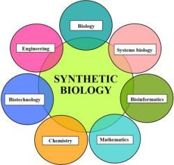 Synthetic Biology Market 2019 2026 Brief Analysis By Top Key