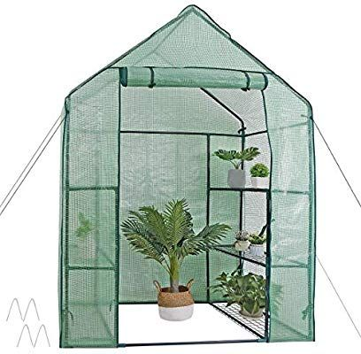 Amazon Com Mini Walk In Greenhouse 3 Tier 6 Shelves With Pe Cover And Roll Up Zipper Door Water In 2020 Portable Greenhouse Walk In Greenhouse Potted Plants Outdoor