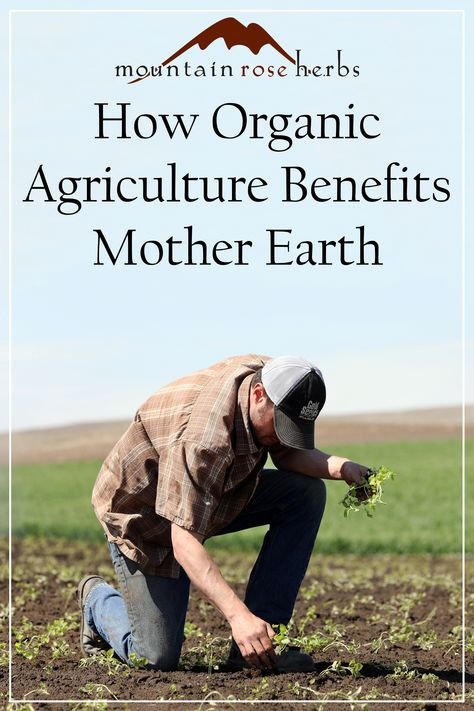 How Organic Agriculture Benefits Mother Earth: Learn how using sustainable farming methods and organic practices will help to limit the effects of climate change by reducing the use of pesticides, herbicides, and chemical fertilizers. Reducing the carbon footprint within agriculture increases the wellness and livelihood of a community.