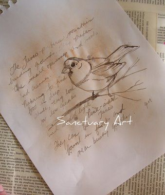 Bird sketches in sepia--a great way to write and sketch in your nature journals.