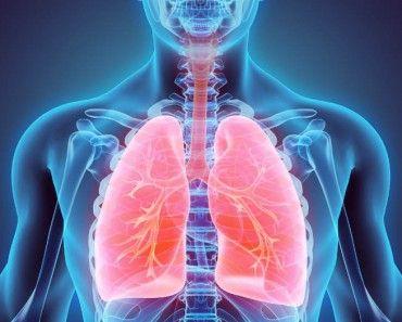 Cómo Aumentar La Capacidad Pulmonar Sin Hacer Ejercicio Físico Consejos Trucos Y Remedios Enfermedades Respiratorias Dejar De Fumar Bronquiectasia