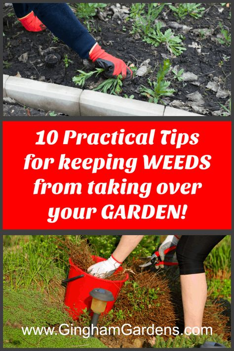 Learn some excellent, practical tips for dealing with weeds in your gardens, including questions answered like, Do Homemade Weed Killers Really Work? Or, Are DIY Weed Killers Safe? Also includes tips for Weed Prevention in Garden and the Best Ways to Keep Garden Weed Free. #bestwaytogetridofweeds #howtogetweedsoutofaflowerbed
