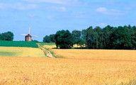 Das andere Holland: Achterhoek #urlaub #niederlande #ferien #familienurlaub #ausflug #kurzurlaub #achterhoek #dasandereholland