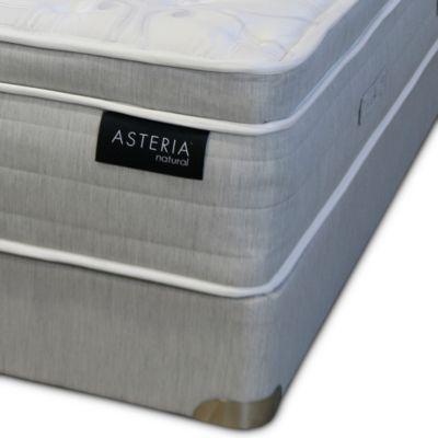 Carissa Euro Pillow Top Twin Xl Mattress Box Spring Set 100