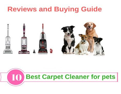 Best Carpet Cleaner For Pets Urine Stain We Have Tested A Number Of These Best Carpet Cleaners And Talked To Many Long Best Carpet Pet Urine Carpet Cleaners
