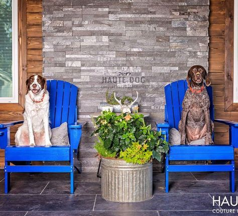 dallasdogphotographer Come sit on the porch with me....