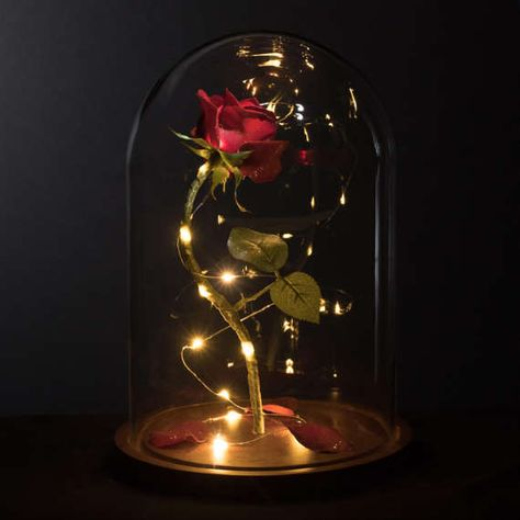 Life-Sized Enchanted Magical Rose from Beauty and the Beast Mother's Day