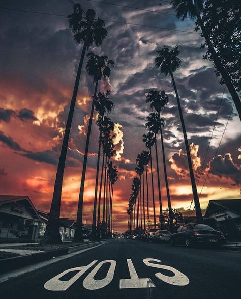 Sunset in Los Angeles California Photography by by aroundtheworldpix