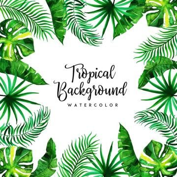 Watercolor Tropical Floral And Leaves Background Green Backdrop Leaves Png And Vector With Transparent Background For Free Download