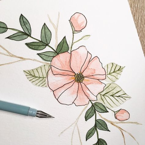 Pflanzen Illustration Malen Aquarell Blumen Floral Botanical