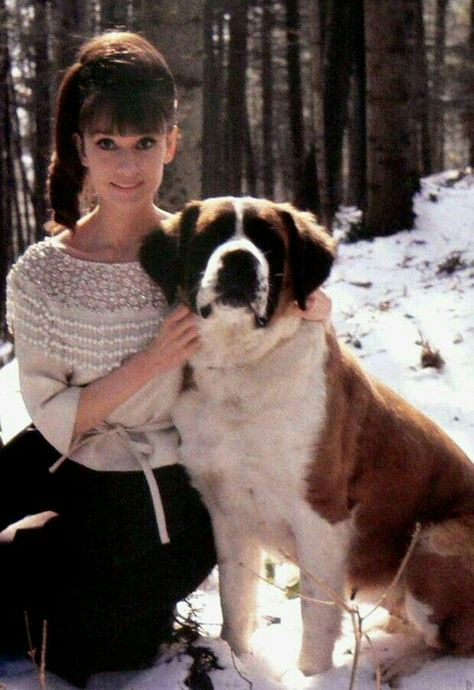 Audrey Hepburn repinned by StoneArtUSA.com ~ affordable custom pet memorials since 2001