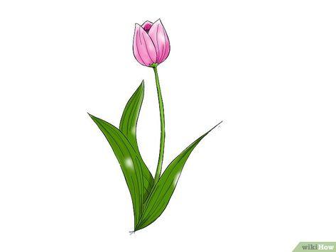 Gambar Ornamen Bunga Hitam Putih Di 2020 Bunga Tulip Bunga