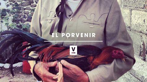 Sex guide El Porvenir